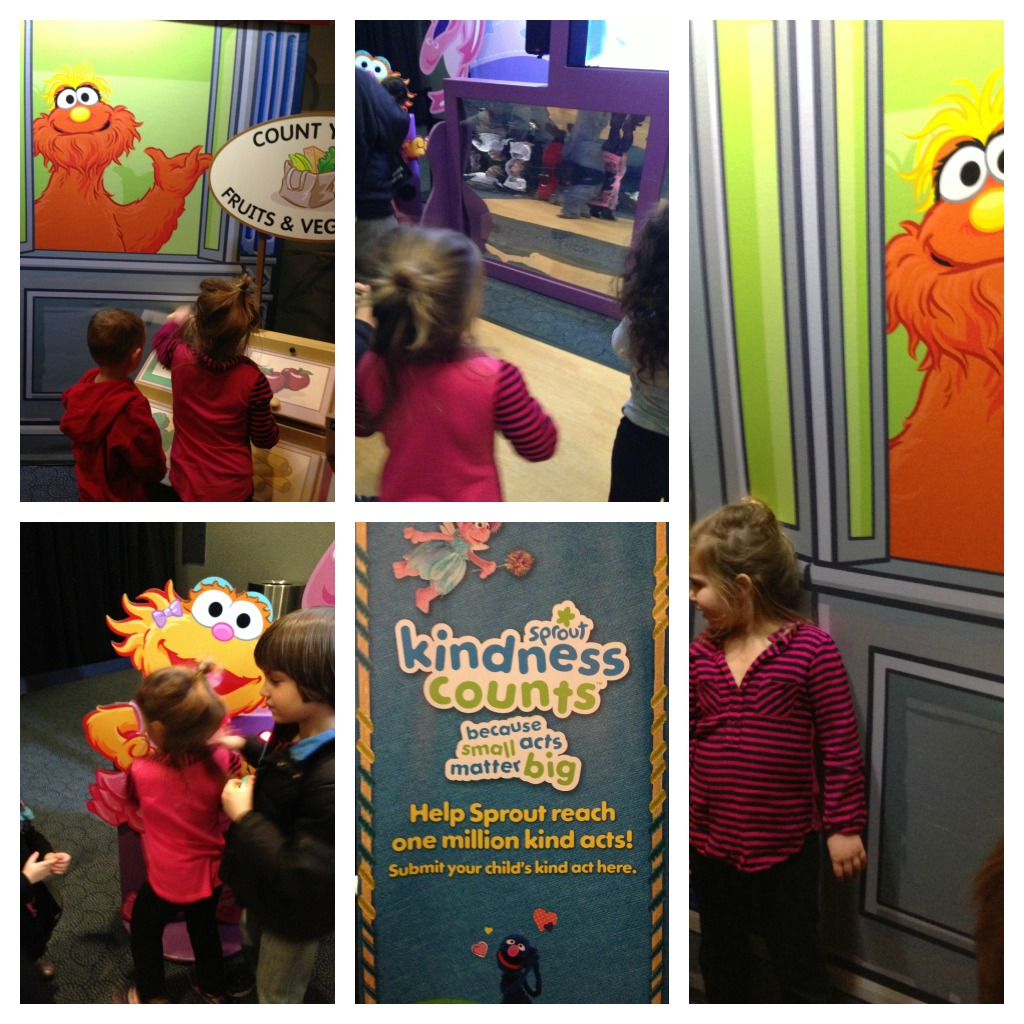 sesame street live 13 Collage